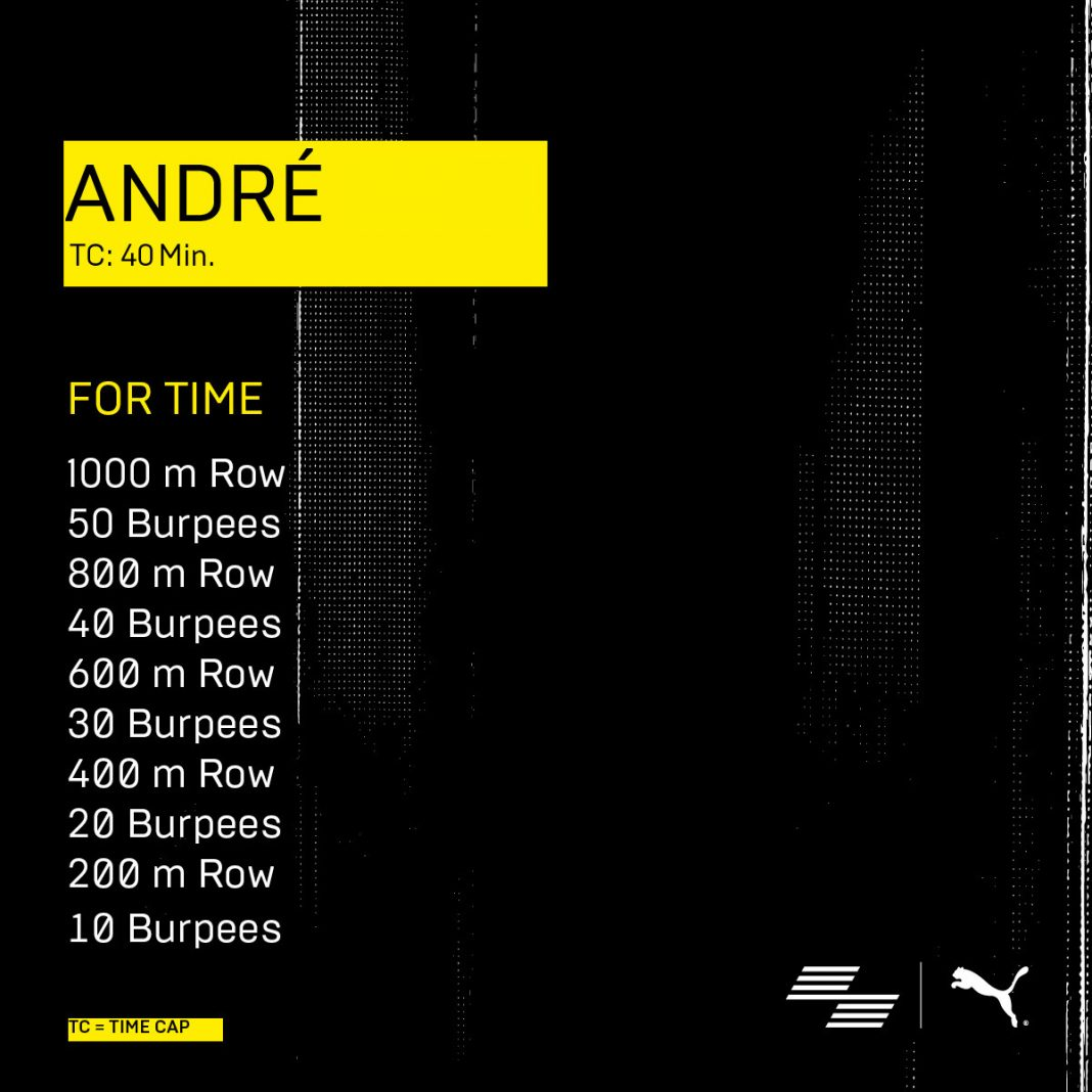 6_Andre